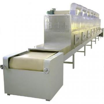 DW High Quality Cherry continuous conveyor mesh belt dryer