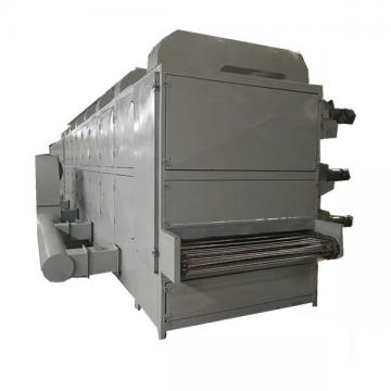 DWT food dryer/belt dryer/conveyor dryer