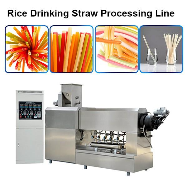 good quality and best service rice straw machine pasta straw extruder and cutter #1 image