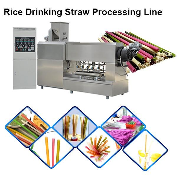 Automatic Eco Friendly Materials Edible Drink Red Biodegradable Straw Machine Extruder Production Line #1 image