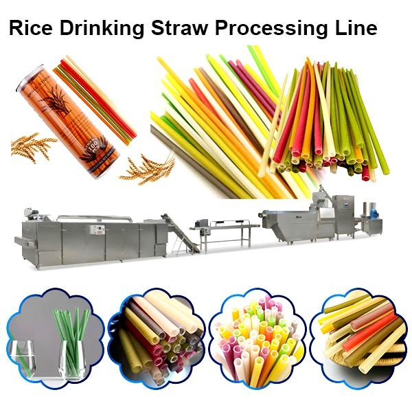 Biodegradable Drinking Straw Making Machine Sugarcane Fiber PLA Raw Material #1 image