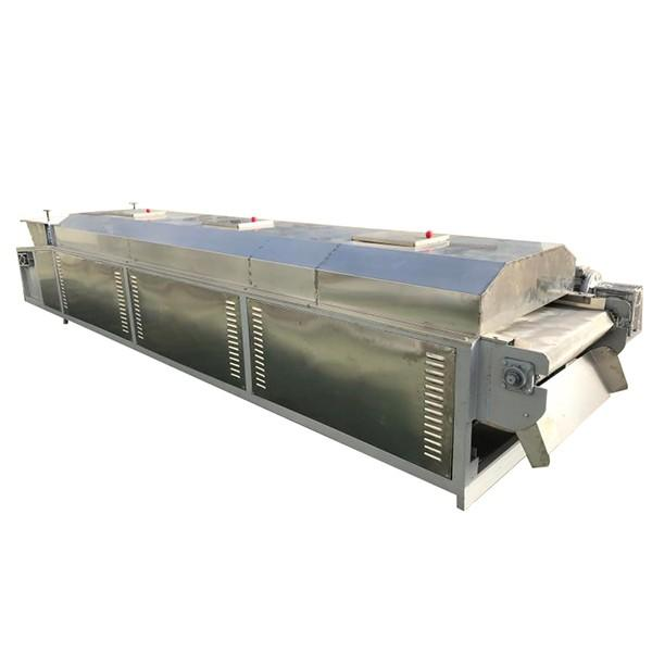 High capacity factory sale price continuous dw mesh belt dryer for chili pepper fresh ginger food #2 image