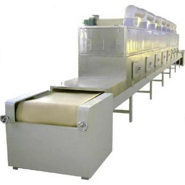High capacity factory sale price continuous dw mesh belt dryer for chili pepper fresh ginger food #1 image