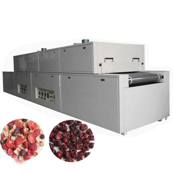 Industrial Conveyor Microwave Herb Leaves Dryer #1 image